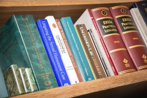Employment Law and Litigation
